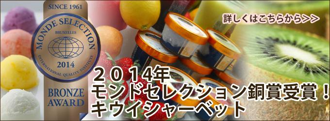 業務用アイスクリーム〜業務用シャーベットならNORUCA.com