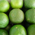 冷凍すだち、冷凍フルーツならNORUCA.com